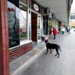 Dog waiting for person Prague edition offleash dogswaiting dogsofinstagram praguehellip